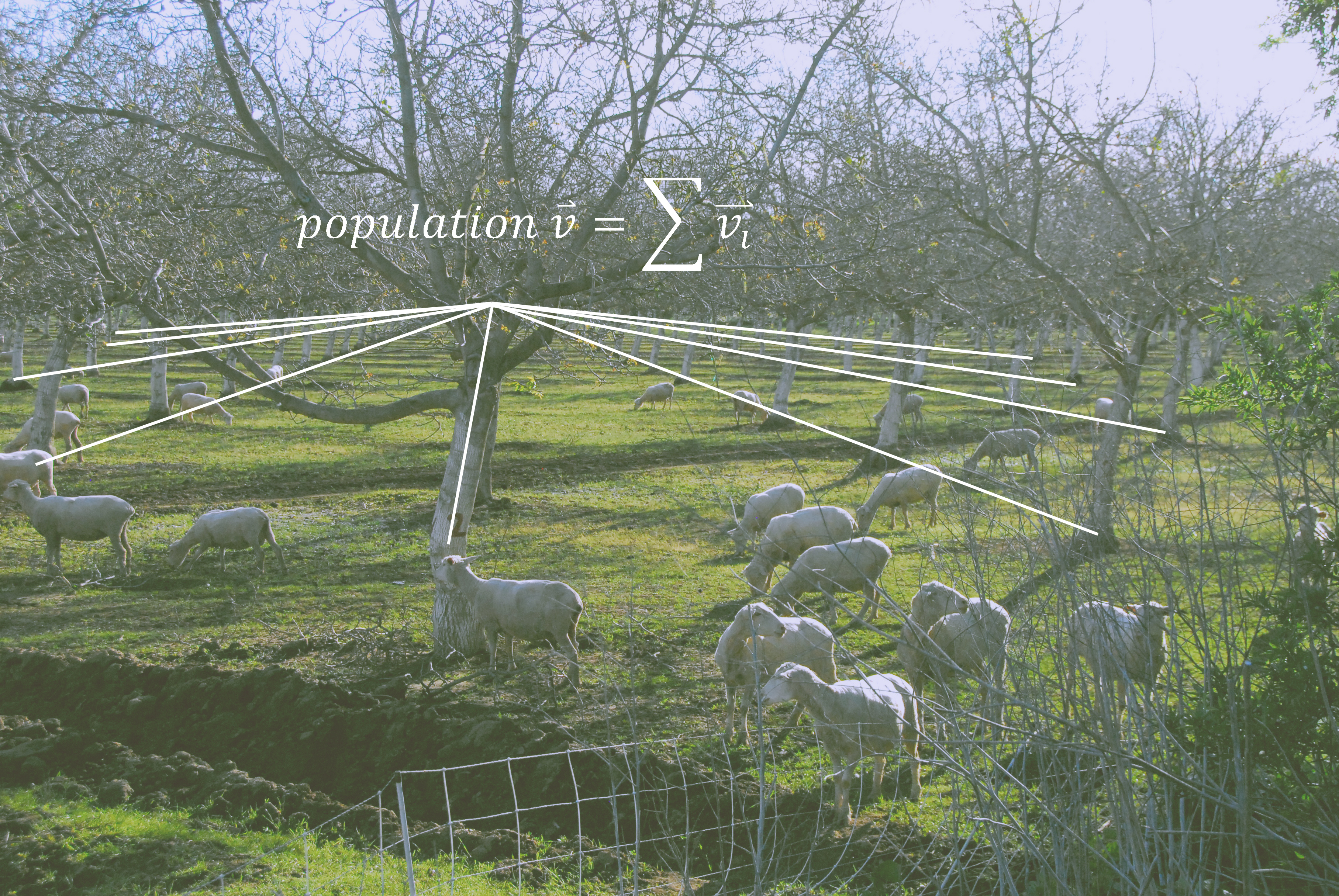 populationvector